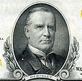 William McKinley, Jr. (Engraved Portrait).jpg