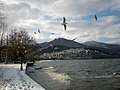 Winter Morning at Kastoria Lake.jpg
