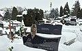 Winter in Sanok 2021. Central Cemetery c. Owl.jpg