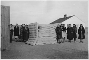 Federal Emergency Relief Administration - Cheyenne women with stack of mattresses they made, 1940