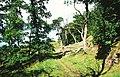 Woodland, Culcreuch - geograph.org.uk - 27039.jpg