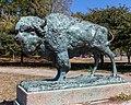 World's Fair Bison Sound of the Whoop Humboldt Park Chicago 2020-0663.jpg