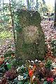Wuppertal - Krummacherstraße - Friedhof - Wald - Pina 01 ies.jpg