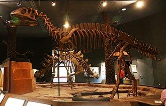 Dashanpu Formation - Image: Yangchuanosaurus zigongensis