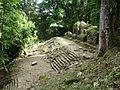 Yaxchilán y Dentro de la Selva.JPG
