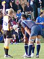 Yellow Card - Rugby union.JPG