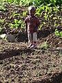 Young Boy in Field - Bahir Dar - Ethiopia (8681130860).jpg