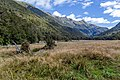 Young River Valley, New Zealand 05.jpg
