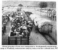 Zimmerer+Zeller Genocide in GSWA p 75.jpg