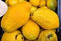 Zitronen Sizilien jm59193.jpg