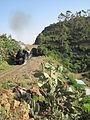 Zug bei Shegirini 2.JPG