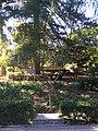 """""""000 San Anton Palace Garden 026"""".jpg"""