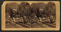 """I helped to build Pike's Peak railroad myself,"" Colorado, U.S.A, from Robert N. Dennis collection of stereoscopic views 3.png"