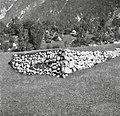 """""""Kašta"""", urejena groblja - zgoraj travnik, Bavščica 1952.jpg"""