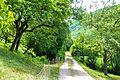 (1) Streuobstwiesen im Donntal.jpg