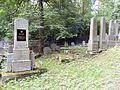 Židovský hřbitov, Ledeč nad Sázavou2.jpg