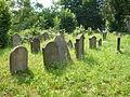 Židovský hřbitov ve Vamberku 17.7.2010 - obr. č. 2.JPG
