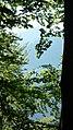 Вр.Марагидик през дърветата - panoramio.jpg
