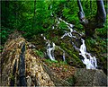 Долната каскада на водопад Варовитец.jpg