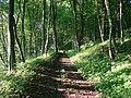 Дорога через літні Товтри - panoramio.jpg