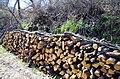 "Дрвја пред црквата во селото ""Горни Дисан"".JPG"