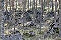 Линия Маннергейма - panoramio.jpg