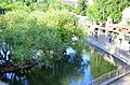 Московский зоопарк. Фото 38.jpg