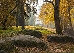 Осінній пейзаж в дендрологічному парку Олександрія.jpg