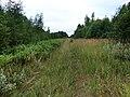 Разобранная линия Вецуми - Гулбене - Иерики возле ст. Сита - panoramio.jpg