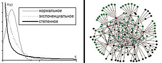 Project networks - Figure 2.b Distribution of accidental process for normal, exponential and sedate laws and an approximate graphic representation of a network (Sedate distribution of connections in nodes)