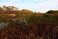 Река Урал в восточном направлении - panoramio (1).jpg