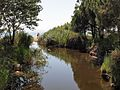 Речка в Торони - panoramio.jpg
