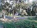 Тихий двор - panoramio.jpg