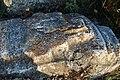 Հուշարձան Քարվաճառում (16).jpg