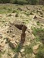 احد شواهد الاثرية للقبور في بندر جصة.jpg
