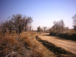 Esfarvarin - Image: راه کشاورزی در اسفرورین