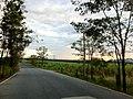 แถวๆ เขาเขียว ชลบุรี - panoramio (11).jpg