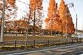 ときの広場 - panoramio (2).jpg