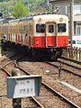 来る列車 - panoramio.jpg