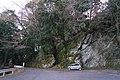 秋葉神社 - panoramio (22).jpg