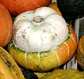 - Pumpkins - detail 2.jpg