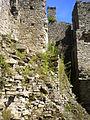 12 08-08 Château de Ranrouët 033.jpg