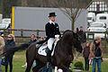 13-04-19-Horses-and-Dreams-2013 (34 von 114).jpg