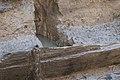 14-11-15-Ausgrabungen-Schweriner-Schlosz-RalfR-072-N3S 4055.jpg