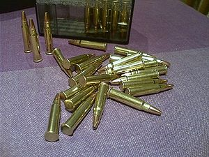 .17 HMR - A case of .17 HMR rounds with hollow points.