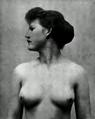 1896Handbook Anatomy image 2.png