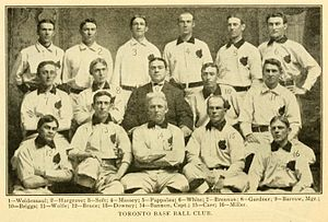 Toronto Maple Leafs (International League) - The 1902 Maple Leafs