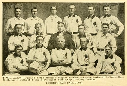 Toronto Maple Leafs (International League) - Wikiwand 31d678796