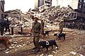 1998 United States embassy in Nairobi bombings IDF relief IV.jpg