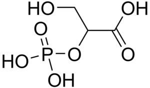 2-Phosphoglyceric acid - Image: 2 Phosphoglycerate